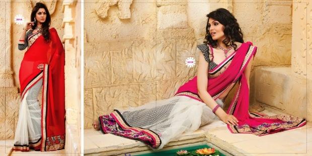 brijraj sarees (12)