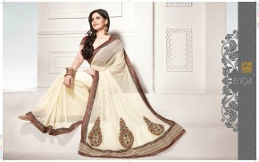 Zarine Khan Saree